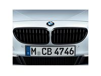 BMW 640i xDrive Grille